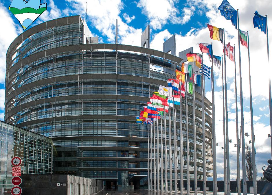 Odluka o raspisivanju izbora za članove u Europski parlament iz Republike Hrvatske